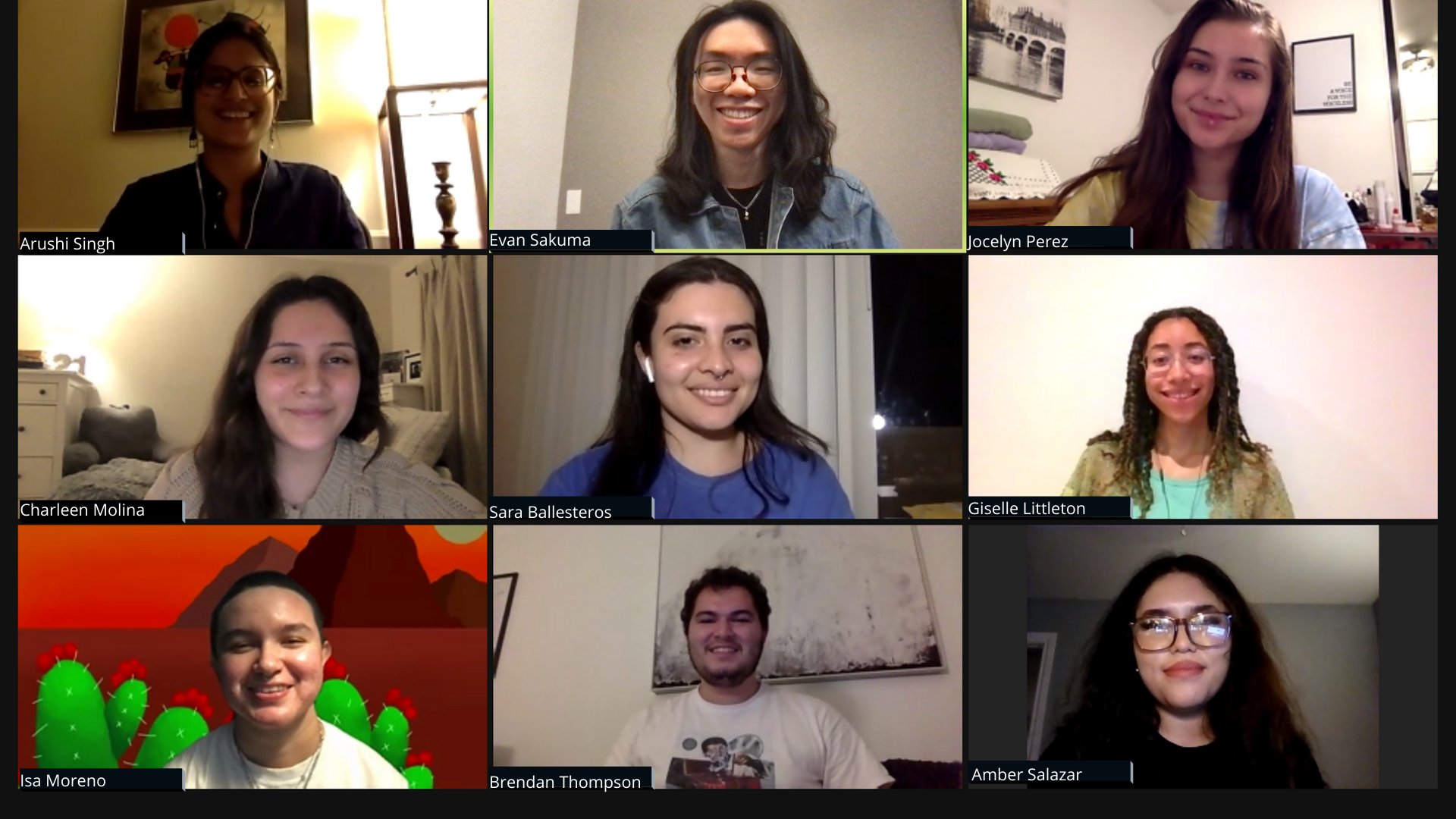 An image of the 2020 - 2021 Arts In Cohort taken over Zoom.